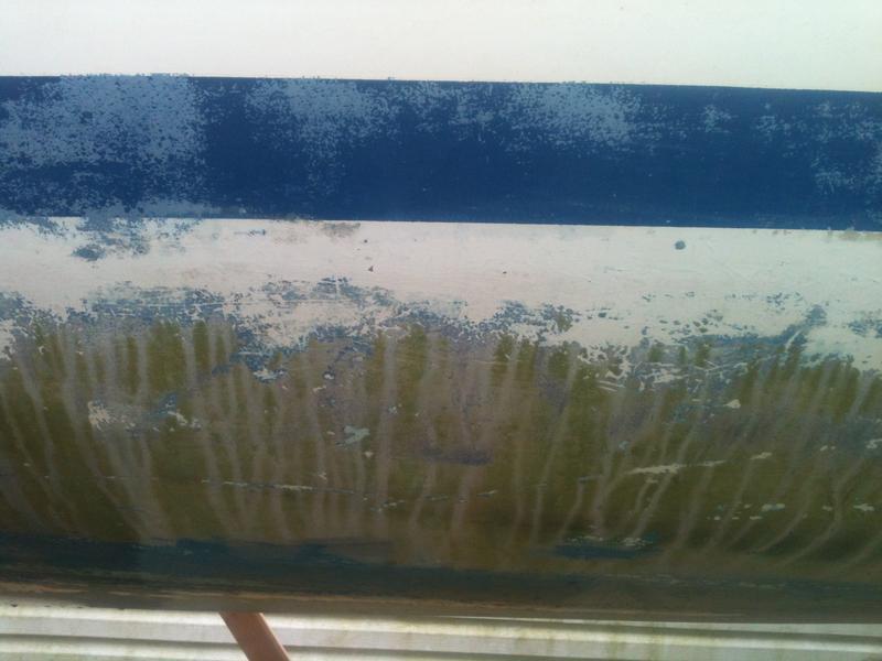 Bottom paint-bottom-prior-paint.jpg