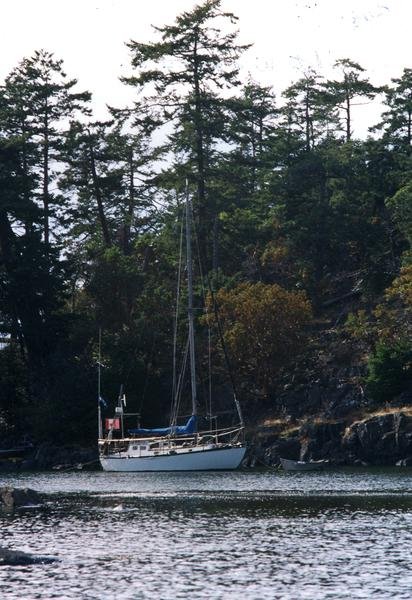 Pros and cons of steel sailboats-brent-nearjerv-aug-01.jpg
