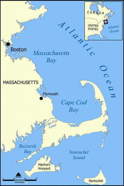 New Name Needed-cape_cod_bay_map_resize.jpg
