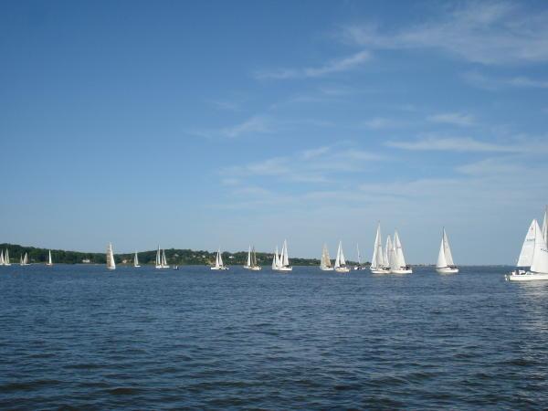Sailing death close to home-dsc01216-2-.jpg