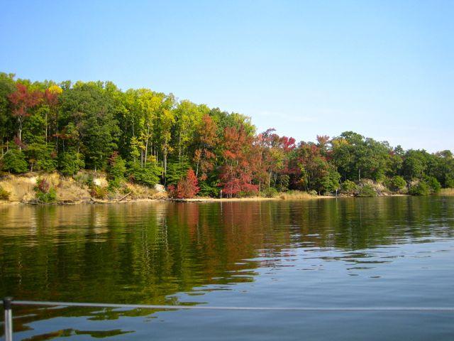 Chesapeake Rainy Day Antidote-fall-color-1.jpg