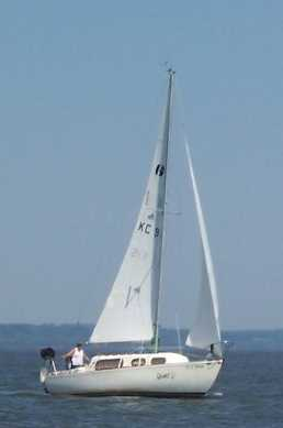 Finally bought my sailboat!-gromit%2520sous%2520voile.jpg