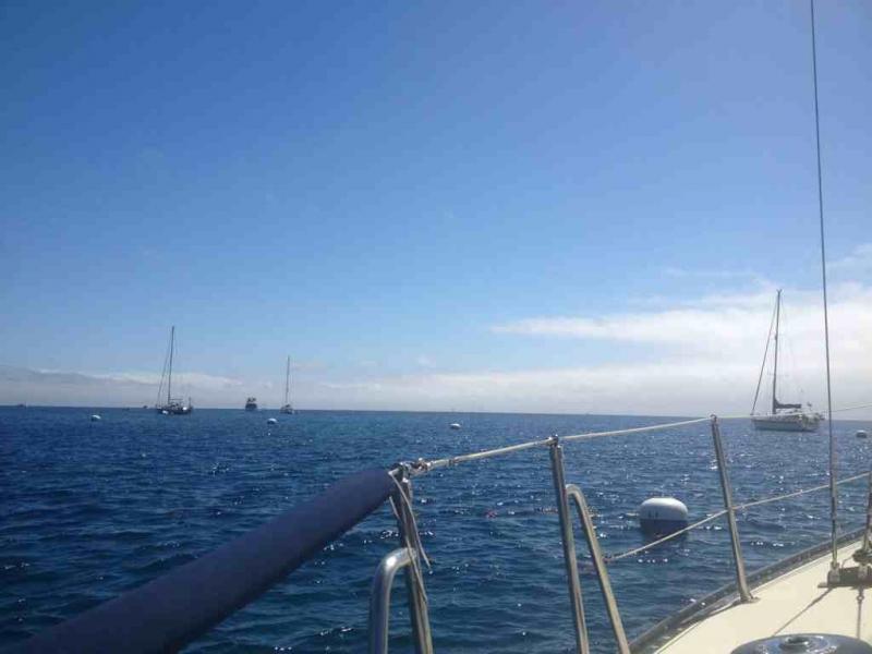 Headed to Catalina!-imageuploadedbytapatalk1374764019.131357.jpg